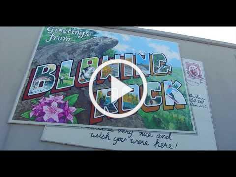 19th Annual Blue Ridge Conservancy 5k