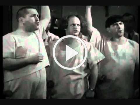 Three stooges Dr Howard Dr Fine Dr Howard