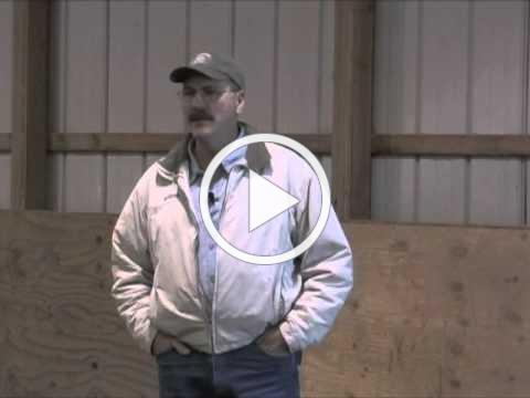 Horse Massage: Herd Behavior and Working with Your Own Horse