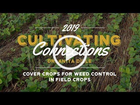 Anita Dille - Cover Crops for Weed Control in Field Crops - PFI annual conference 2019