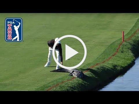 The most ridiculous moments on the PGA TOUR in 2017
