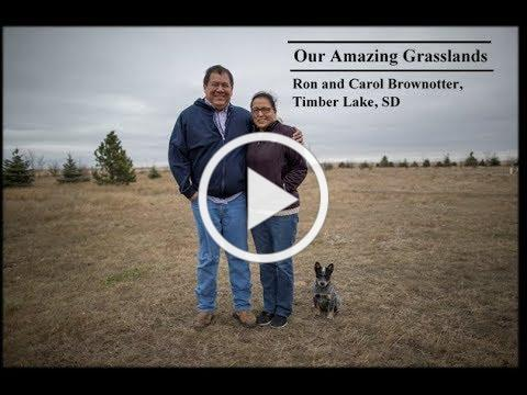 Our Amazing Grasslands ~ Ron and Carol Brownotter
