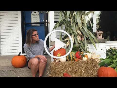 FFJ - Children's Message: All God's Pumpkins - Mrs. Cooley