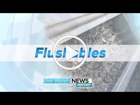Flushable Wipes' Effects On Our Sewer System