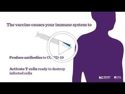 COVID 19 Vaccine 101