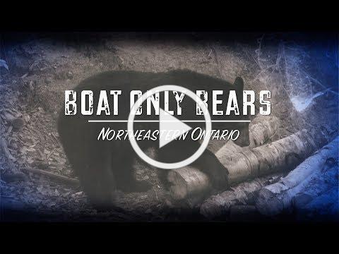 Boat Only Bears (Teaser)