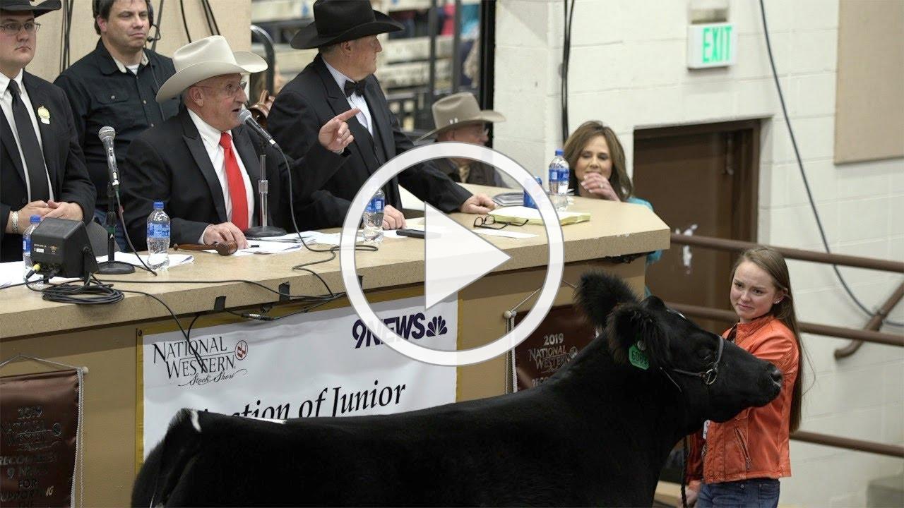 John Korrey, Auctioneer calls the Junior Livestock Champions auction