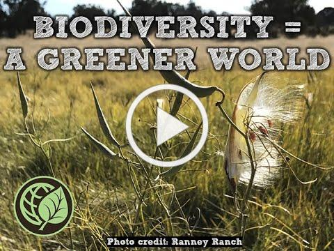 Biodiversity for A Greener World
