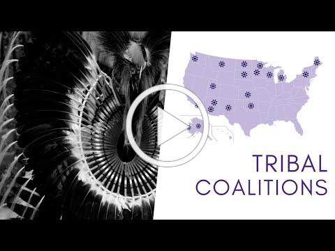 Tribal Coalitions 2019