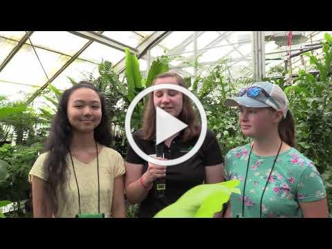 California 4-H State Leadership Conference 2019 - Saturday Newscast