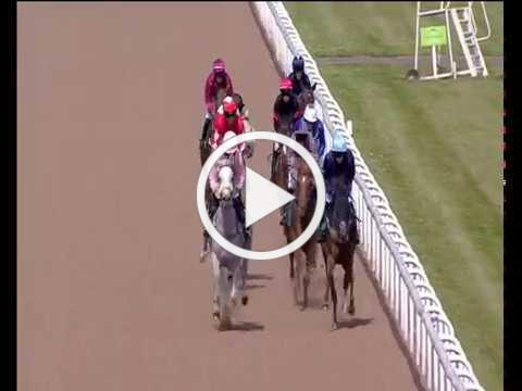 Wolverhampton 10th June - Visit Anantara Al Jabal Al Akhdar Resort Handicap Stakes 0-45