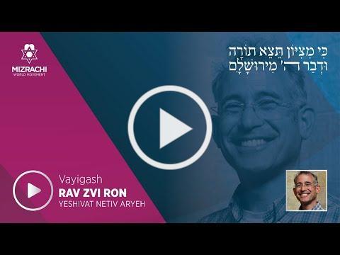 Rabbi Dr. Zvi Ron | Vayigash 5780