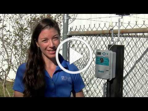 Florida Friendly Irrigation Tips