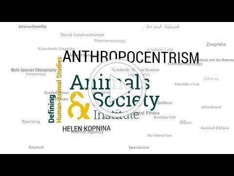 Defining Anthropocentrism with Helen Kopnina - ASI's Defining Human-Animal Studies 27