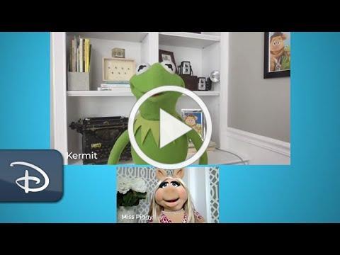 Miss Piggy and Kermit Join Tour de Turtles