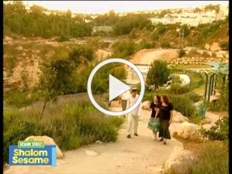 Shalom Sesame: My Shabbat