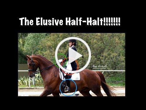 How to Ride a Half-Halt