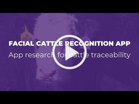 Facial Cattle Recognition App Research