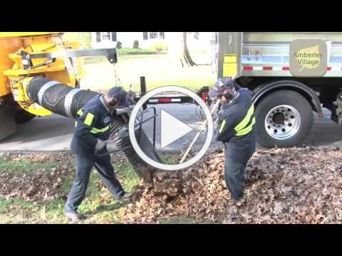 How leaves are collected in Amberley