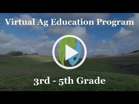 Virtual TEAM Program for 3-5th grade classes - Coming February 2021!