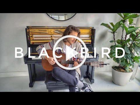 Blackbird (Acoustic Cover) - Cory Asbury