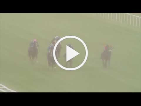 UAE Embassy in London International Stakes - Newbury 29th July Race 2