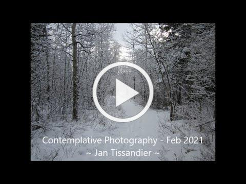 Contemplative Photography - February 2021