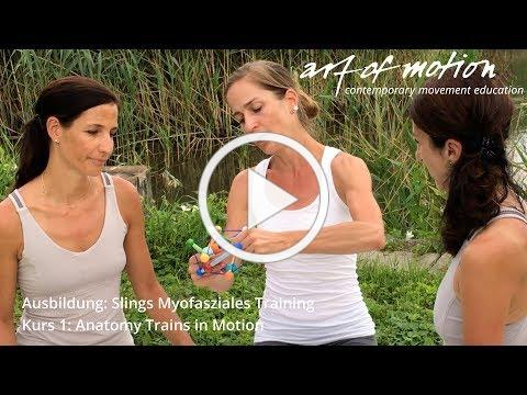 Slings Myofasziales Training - Kurs 1: Anatomy Trains in Motion