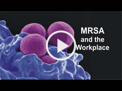 MRSA and the Workplace