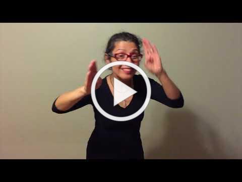 Flying Snake LSM ASL