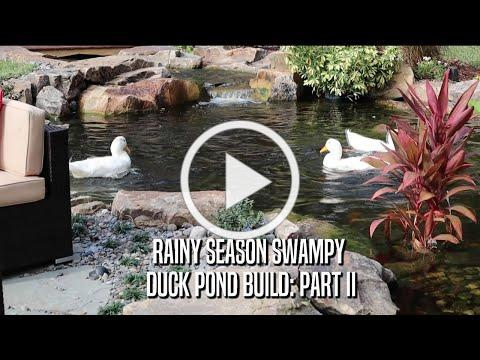 Rainy Season Swampy Duck & Koi Pond Build: Part II