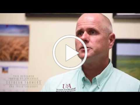 How to Handle Southern Root-Knot Nematodes | Arkansas Soybean Promotion Board