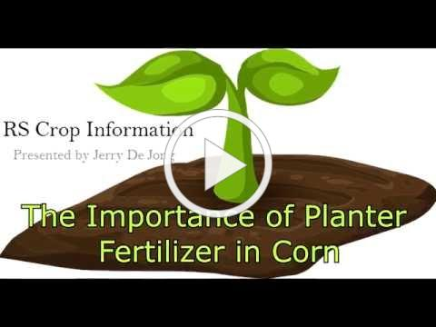The Importance of Planter Fertilizer in Corn