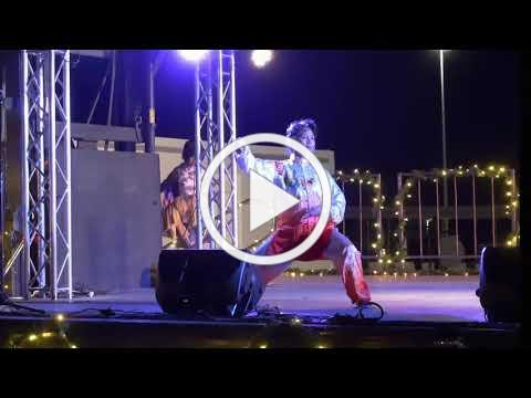 Grandmaster Aiping Cheng 2018 Austin Lantern Festival