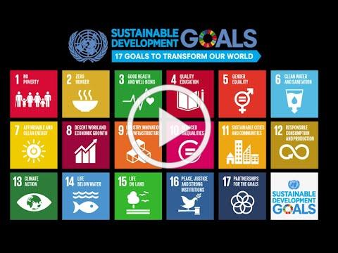 60'ish Seconds of Philanthropy - Why are the Sustainable Development Goals Important?