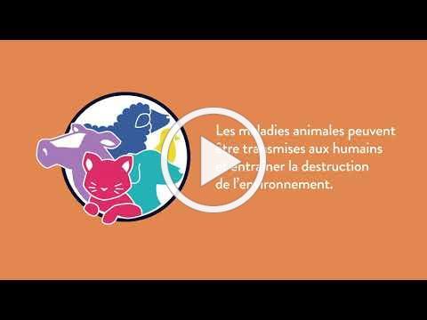 Semaine de la santé animale 2021 - vidéo animée