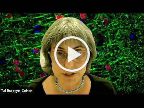Tal Burstyn-Cohen clip