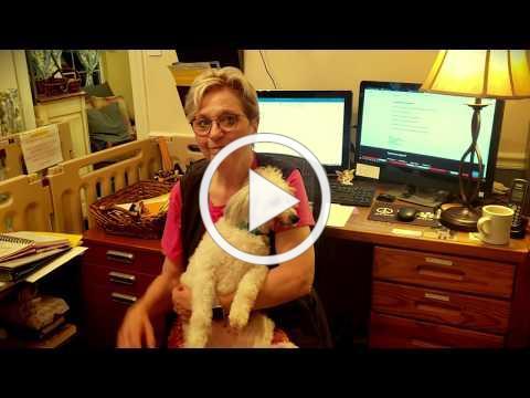 Vlog Intro