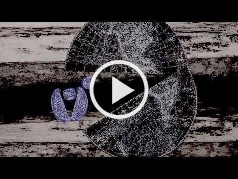 NESTED WORLD stop frame monoprint animation