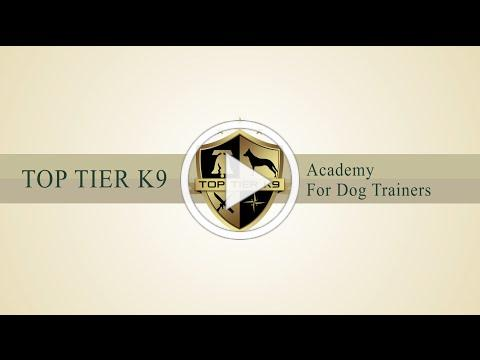 Top Tier K9 Academy for Dog Trainers