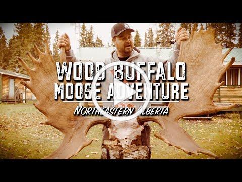 Wood Buffalo Moose Adventure | Promo | Season 17