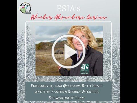 Winter Adventure Series, Beth Pratt and Eastern Sierra Wildlife Stewardship Team