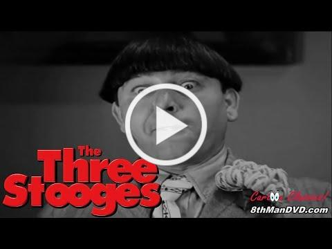 THE THREE STOOGES: Disorder in the Court (1936) (HD 1080p) | Moe Howard, Larry Fine, Curly Howard