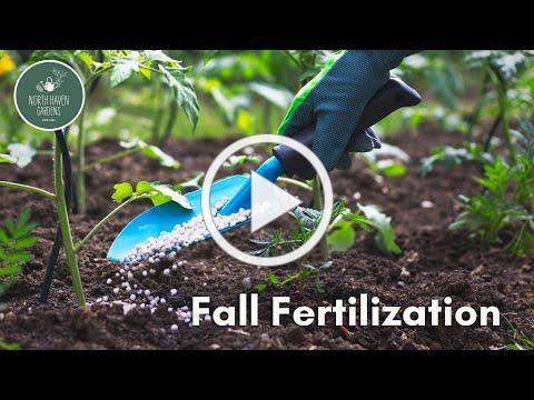Fall Fertilization