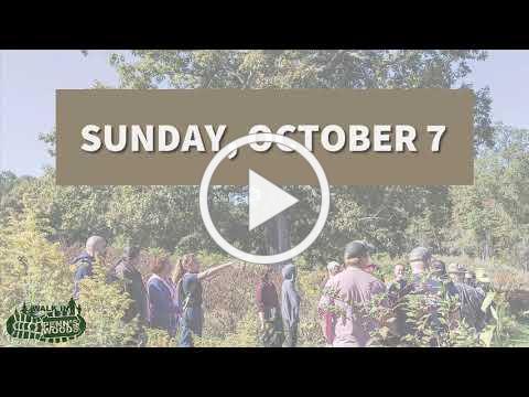 2018 Walk in Penns Woods Video