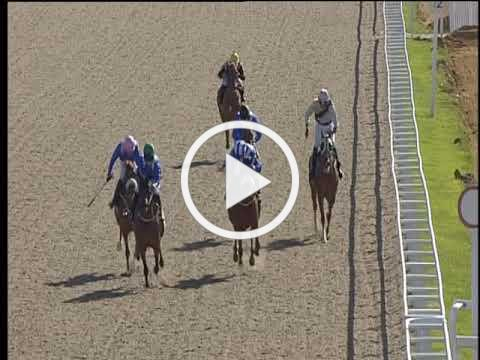 Forta Stud Mares and Fillies Stakes