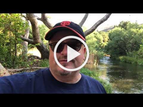Rene Spring Census Video
