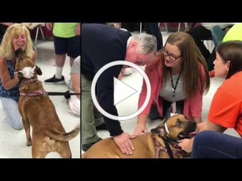 ACT Program: Pet Therapy