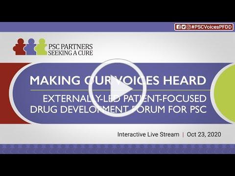 Making Our Voices Heard - Externally-Led PFDD for PSC (Full Program)