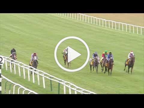 Jebel Ali Racecourse Za'Abeel International Stakes (Group 1 PA) - Newbury 29th July Race 4